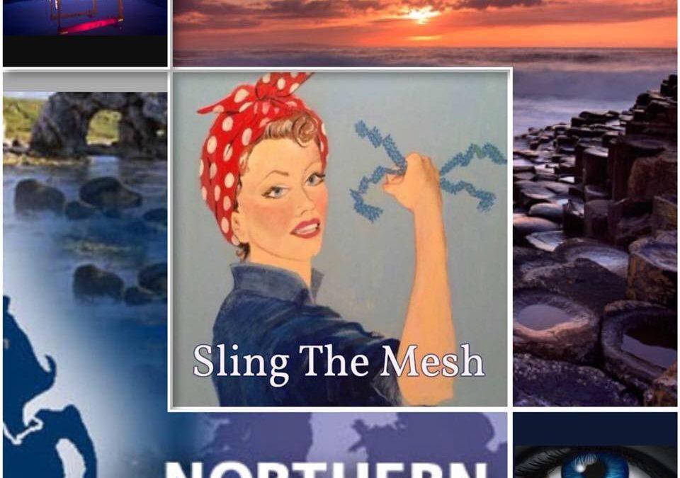 sling the mesh logo